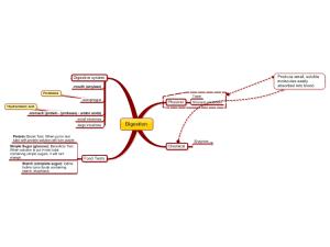 Digestion GCSE: MindManager mind map template   Biggerplate