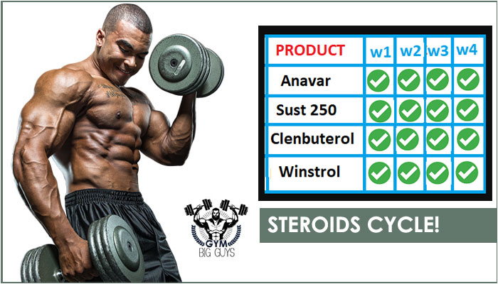 Steroids Cycle: Does it Work Fast & Effective Results? [2019]