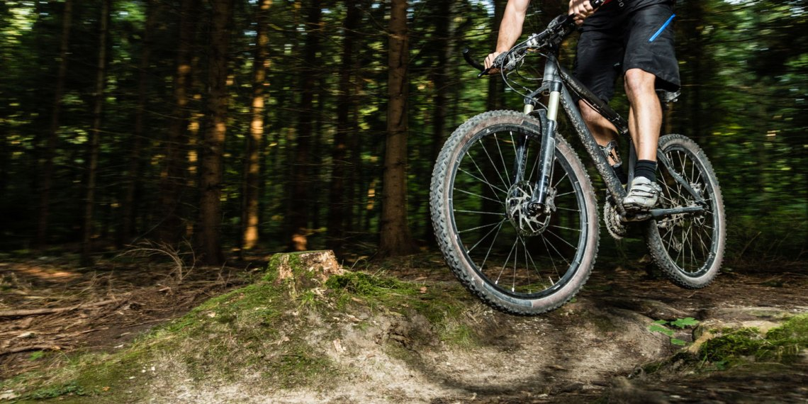 Mountain Bike Rentals