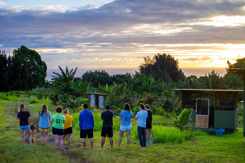 big island farms internships
