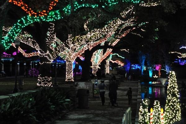 Zoo Christmas Lights Houston