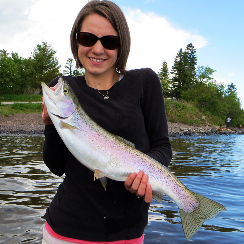 Lake Superior Rainbow Trout