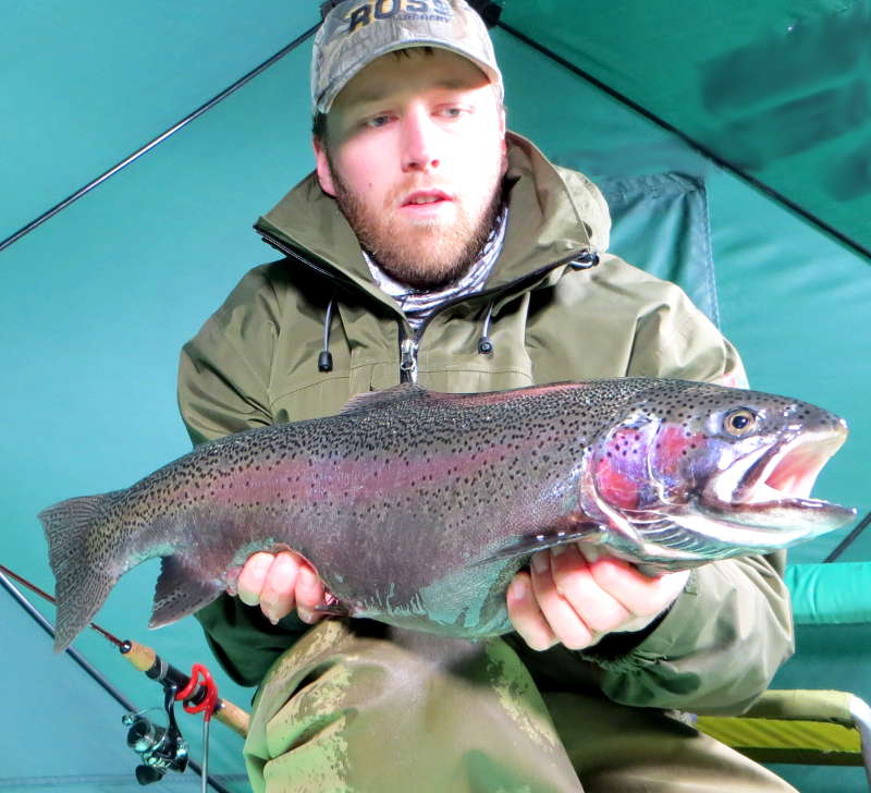 Lake Superior Kamloops Rainbow Trout