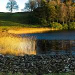lakeland holiday cottages