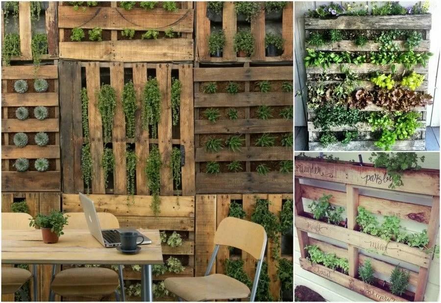 Scopri Come Realizzare Mini Giardini Verticali Bigodino