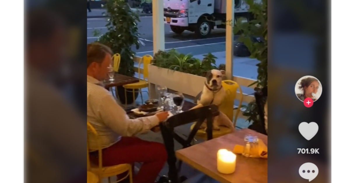 Gemma Colòn sees a dog having dinner with her dad