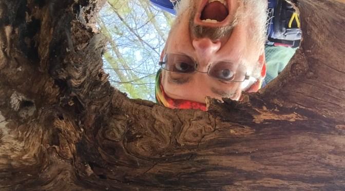 AT Thru Hike #25 – My Favorite Trail Things