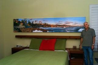 Laguna Coast_on_wall2