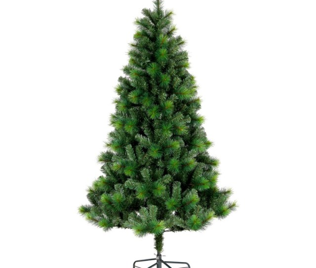 Christmas Cm Noble Fir Tree