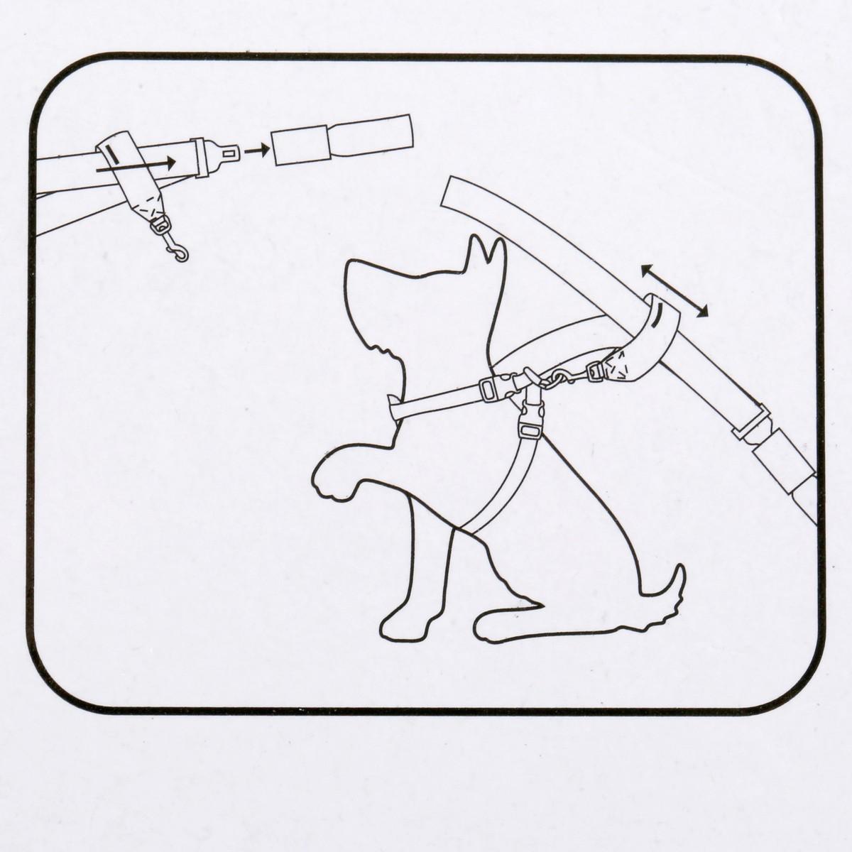 Brilliant Basics Car Harness Attachment