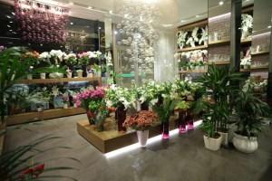 Flower-shop-by-Aysu-CİCEK-Istanbul