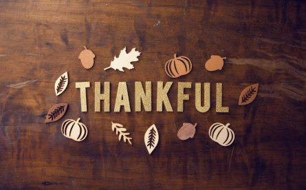 dankbaar herfst