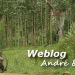 cropped-cropped-Weblog_banner_logo_2.jpg