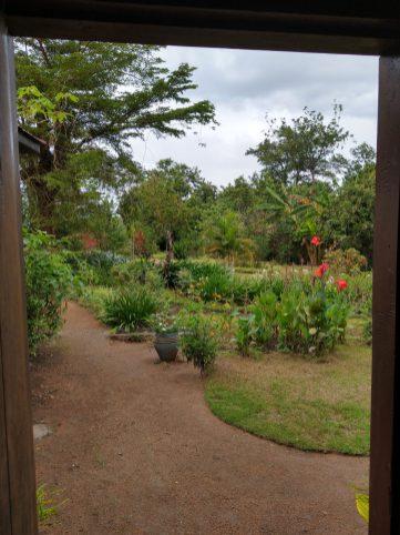 Onze tuin ziet er nog florisant uit. Wat genieten we weer van al het groen en het warme weer.