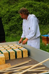 Bijenbaas koninginnen krijgen nieuwe woning
