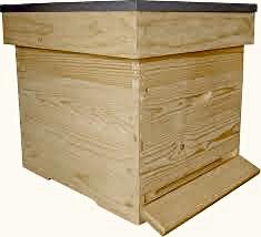 Bijenvolk in bijenkast