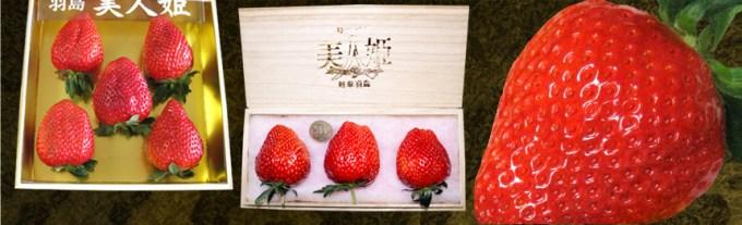特大いちご美人姫の通販サイト 奥田農園 | 特大いちご美人姫(桐箱入)