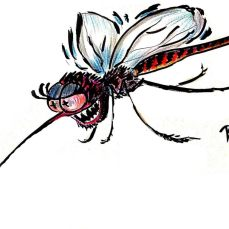 Bloodthirsty is this mosquito