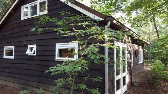 Bijzondere Overnachting Origingeel Overnachten Slapen in de bossen in een boshuisje op de Veluwe15
