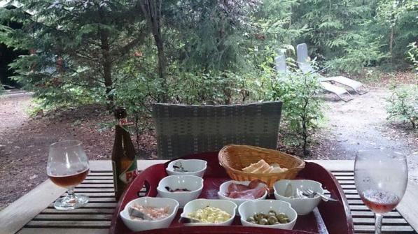 Bijzondere Overnachting Origingeel Overnachten Slapen in de bossen in een boshuisje op de Veluwe8