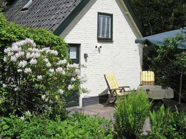 Bijzondere Overnachting Origineel Overnachten Vakantiehuis Kleine Nachtegaal in duinen van Schoorl9