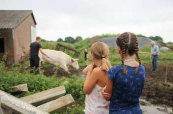 Bijzondere Overnachting Slapen bij de boer op de Brabantse Hei in Hooge Mierde13
