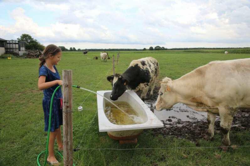 Bijzondere Overnachting Slapen bij de boer op de Brabantse Hei in Hooge Mierde15