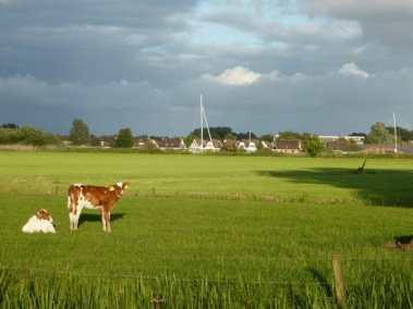 Bijzondere Overnachting Slapen BoerenBed Hoeve Meskenwier Akkrum Friesland9