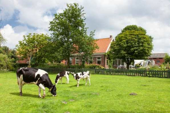 Bijzondere Overnachting Slapen bij de Boer Hoeve Banenburg Veere Zeeland1