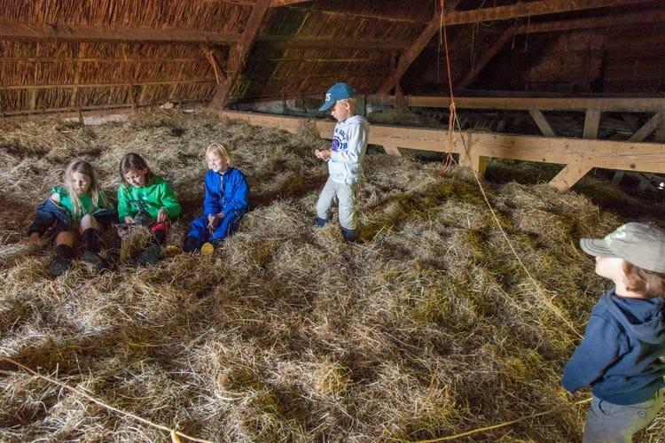 Bijzondere Overnachting Slapen bij de Boer Hoeve Banenburg Veere Zeeland17