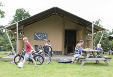 Bijzondere Overnachting Origineel Overnachten Slapen in de natuur in een Woodlodge of Boslodge op Veluwe Camping De Pampel19