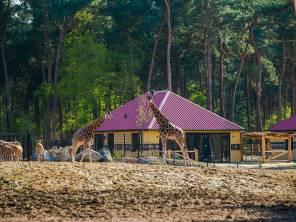 75 euro kortingscode Safari Resort Beekse Bergen3