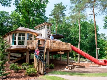 Slapen in een luxe boomhut of treehouse van Landal