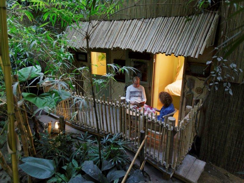 Bijzondere Overnachting Origineel Overnachten Slapen in de Jungle Cabana van Center Parcs Het Heijderbos 1