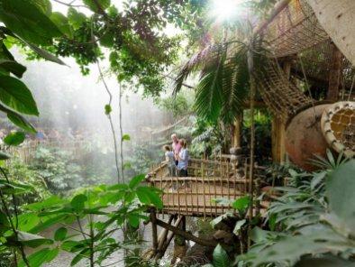 Bijzondere Overnachting Origineel Overnachten Slapen in de Jungle Cabana van Center Parcs Het Heijderbos 13