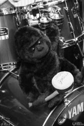 Urban Gorilla at the Bike'N'Hound. Photography by Grey Trilby   Tobias Alexander
