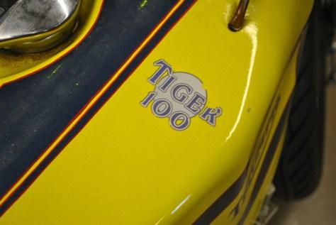 Triumph Tiger Daytona Racer - Tank
