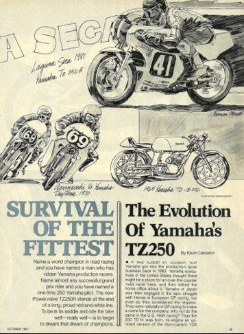 Yamaha TZ250 Evolution
