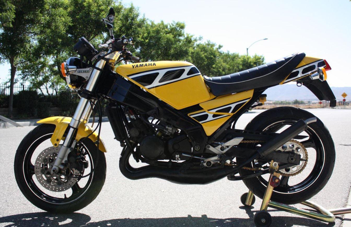 Street Fighter – 1988 Yamaha TZR250 – Bike-urious
