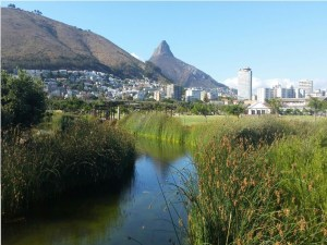 Bike and Hike Cape Town City Cycle Tour