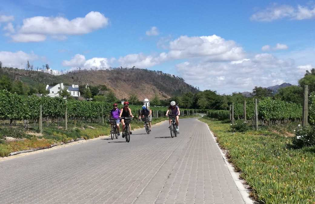 7 Days of Cycling Bliss (Incl. Winelands, Karoo & Garden Route)