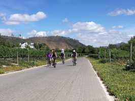 Bike and Hike Franschhoek guided cycle tour