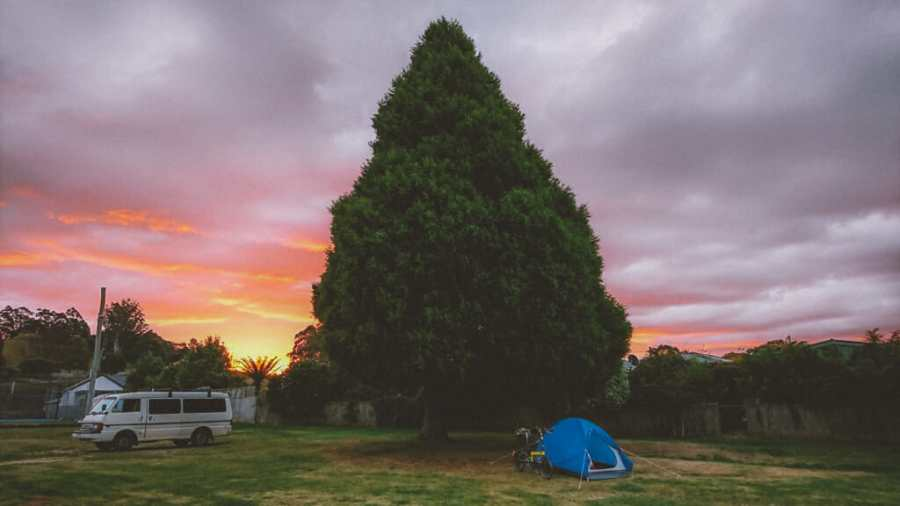 camping under a large tree at Mole Creek