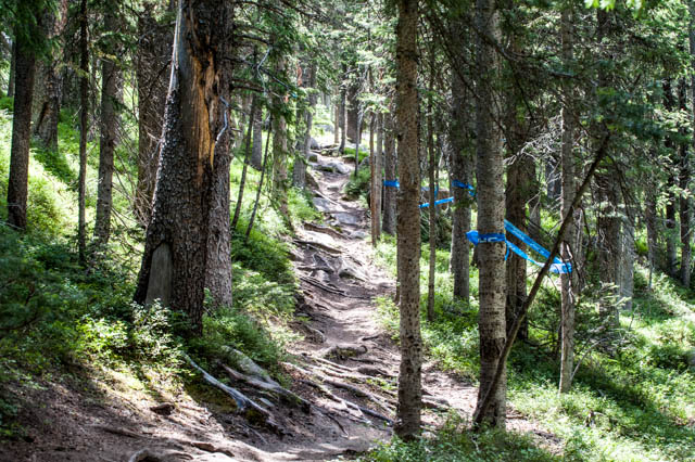 This is a pretty decent summary of the Mountain Goat trail at Winter Park.