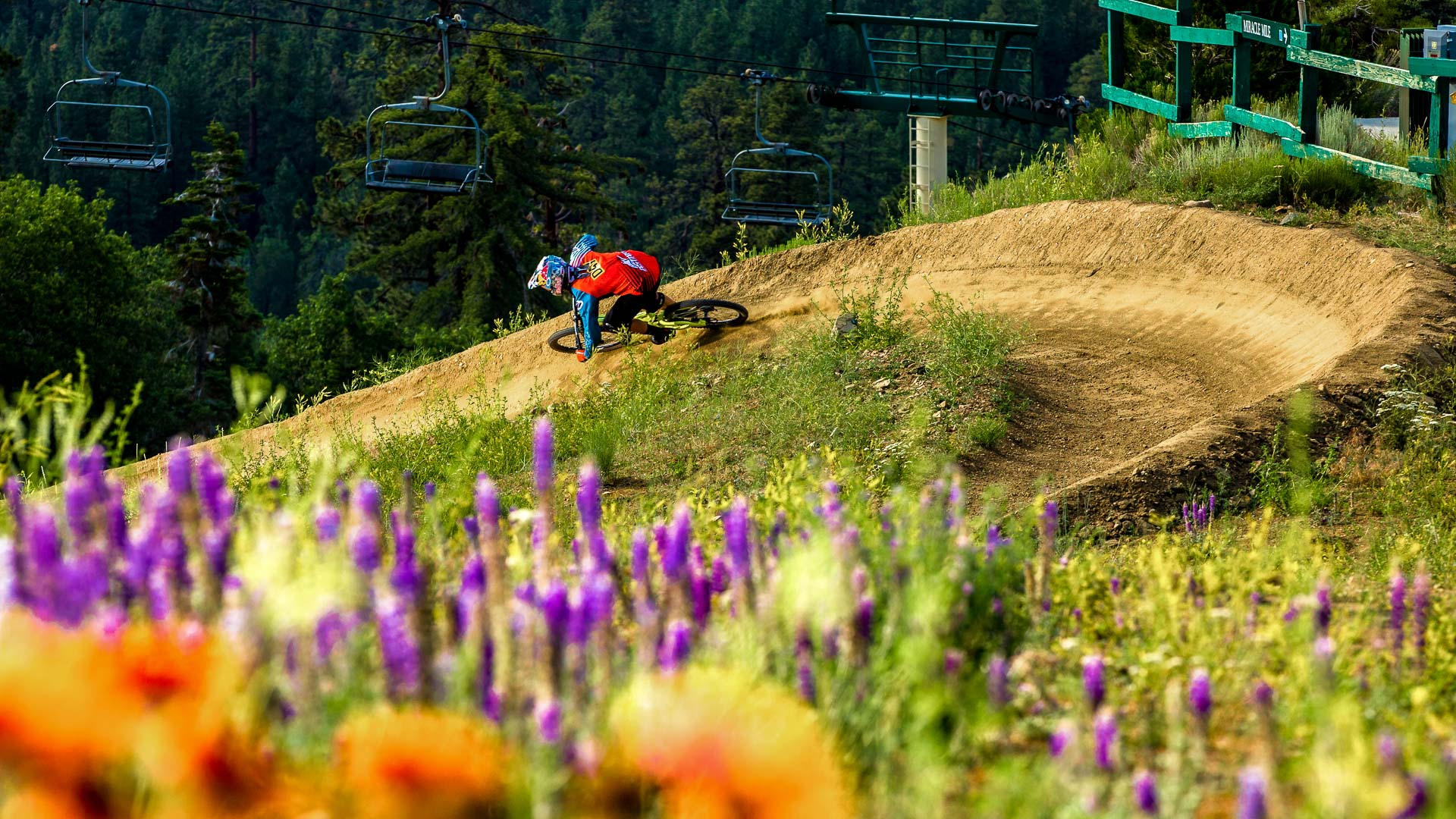 5d764ac976b Mammoth and Snow Summit Downhill Mountain Bike Parks Open Friday ...
