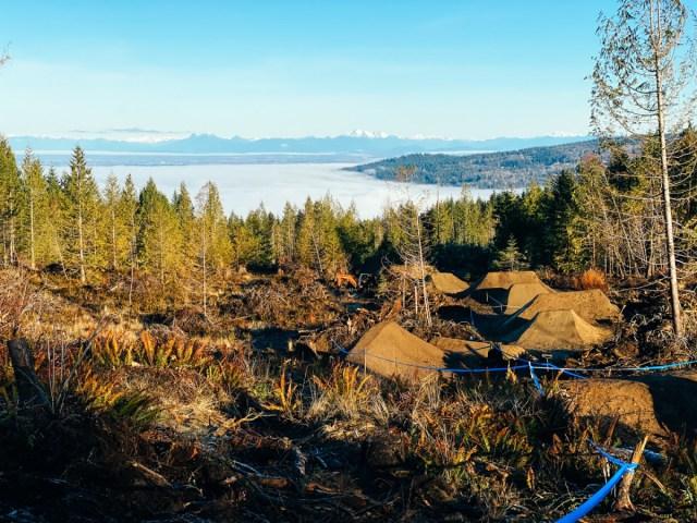 Blue Steel trail