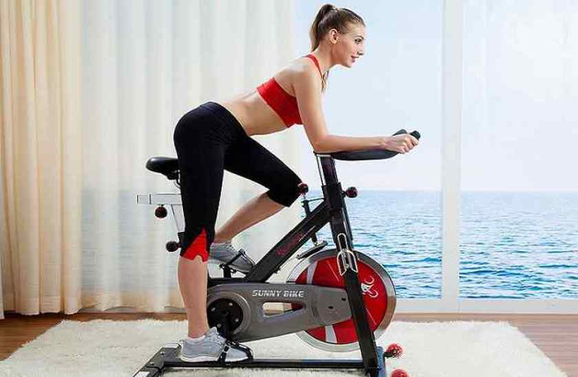 Sunny Health & Fitness Evolution Pro Magnetic Indoor Cycling Bike