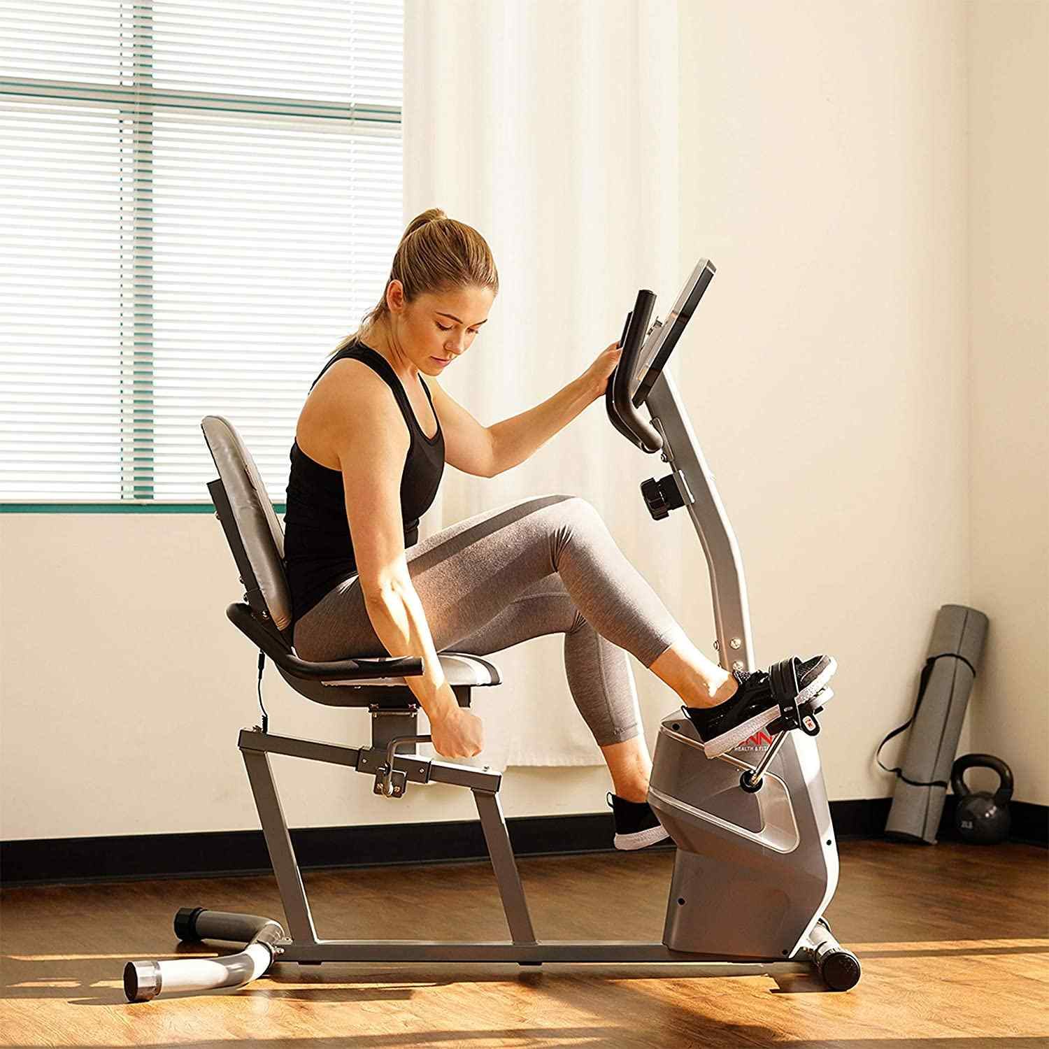 Sunny Health & Fitness Magnetic Recumbent Exercise Bike SF-RB4806