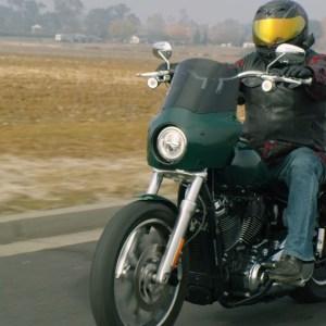Omar | Riding Academy