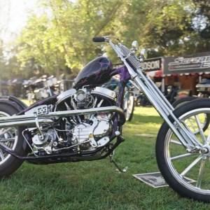 Born-Free 12 | Harley-Davidson
